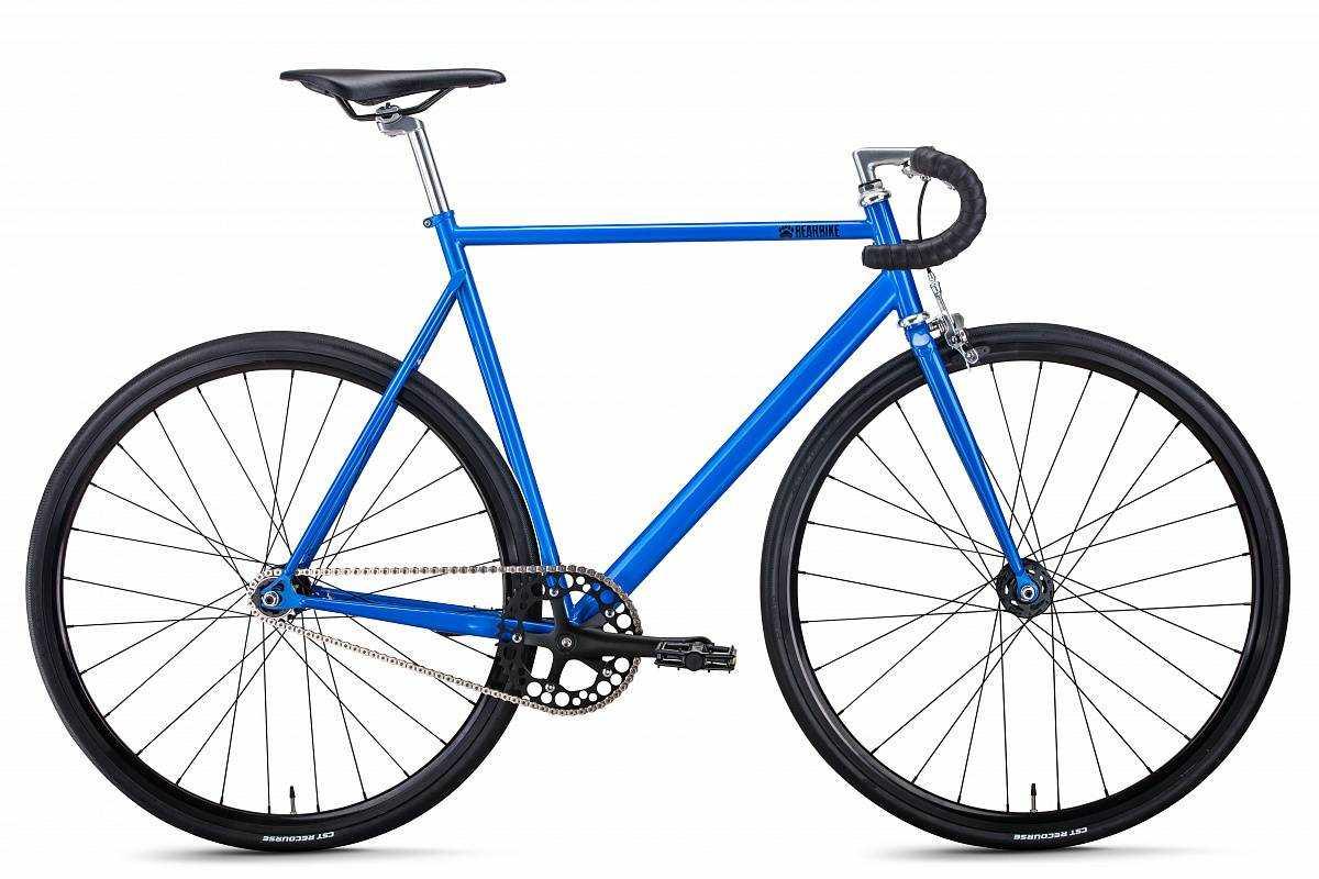 Torino (рост 570 мм) 2019-2020, синий, RBKB0YHS1004